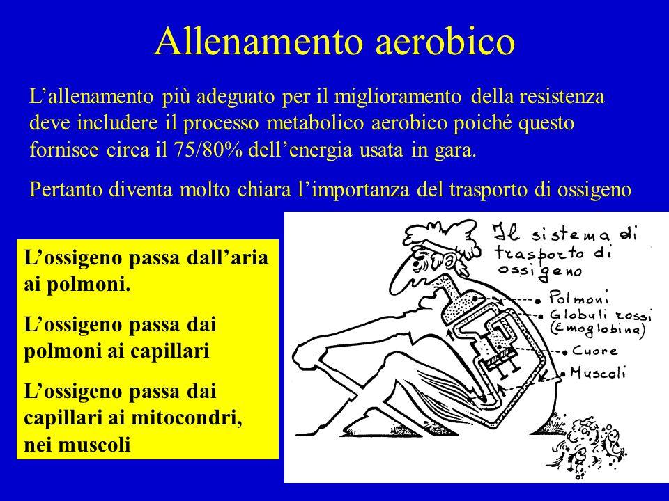 Allenamento aerobico Lallenamento più adeguato per il miglioramento della resistenza deve includere il processo metabolico aerobico poiché questo forn