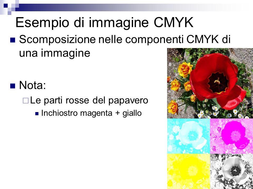 Esempio di immagine CMYK Scomposizione nelle componenti CMYK di una immagine Nota: Le parti rosse del papavero Inchiostro magenta + giallo