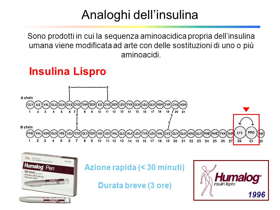 Analoghi dellinsulina Sono prodotti in cui la sequenza aminoacidica propria dellinsulina umana viene modificata ad arte con delle sostituzioni di uno
