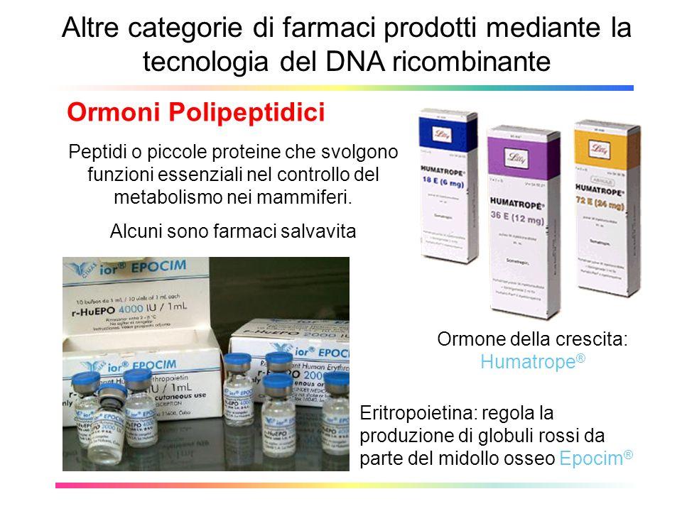 Altre categorie di farmaci prodotti mediante la tecnologia del DNA ricombinante Ormoni Polipeptidici Eritropoietina: regola la produzione di globuli r