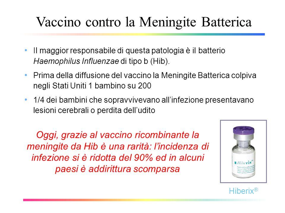Vaccino contro la Meningite Batterica Il maggior responsabile di questa patologia è il batterio Haemophilus Influenzae di tipo b (Hib). Prima della di