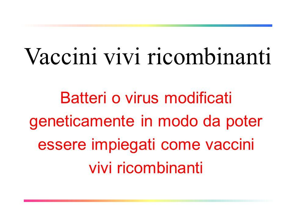 Vaccini vivi ricombinanti Batteri o virus modificati geneticamente in modo da poter essere impiegati come vaccini vivi ricombinanti
