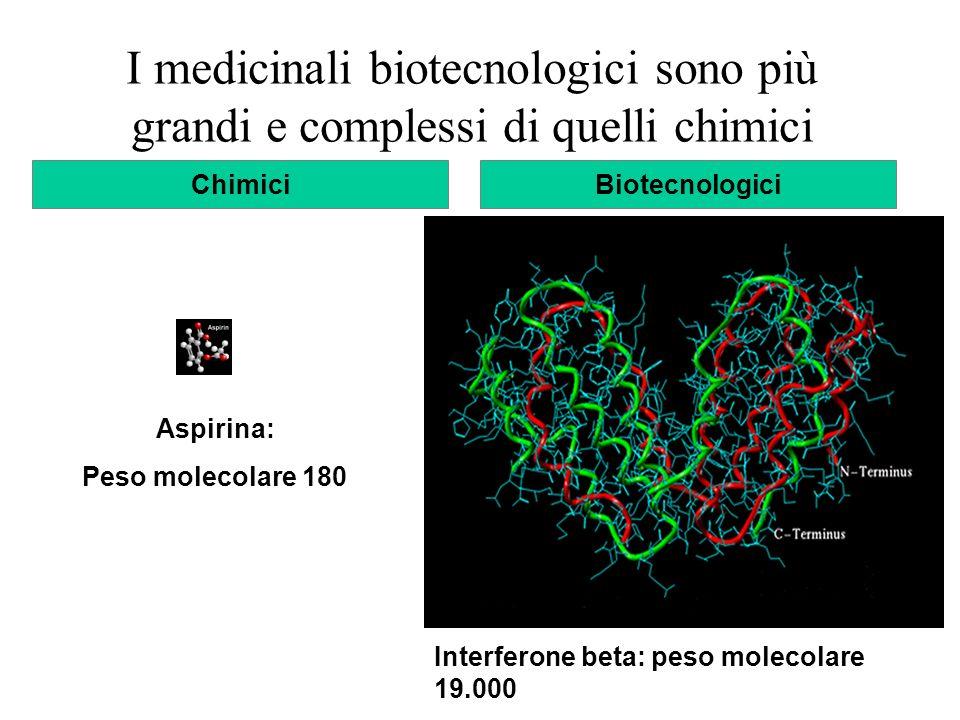Interferone beta: peso molecolare 19.000 Aspirina: Peso molecolare 180 ChimiciBiotecnologici I medicinali biotecnologici sono più grandi e complessi d