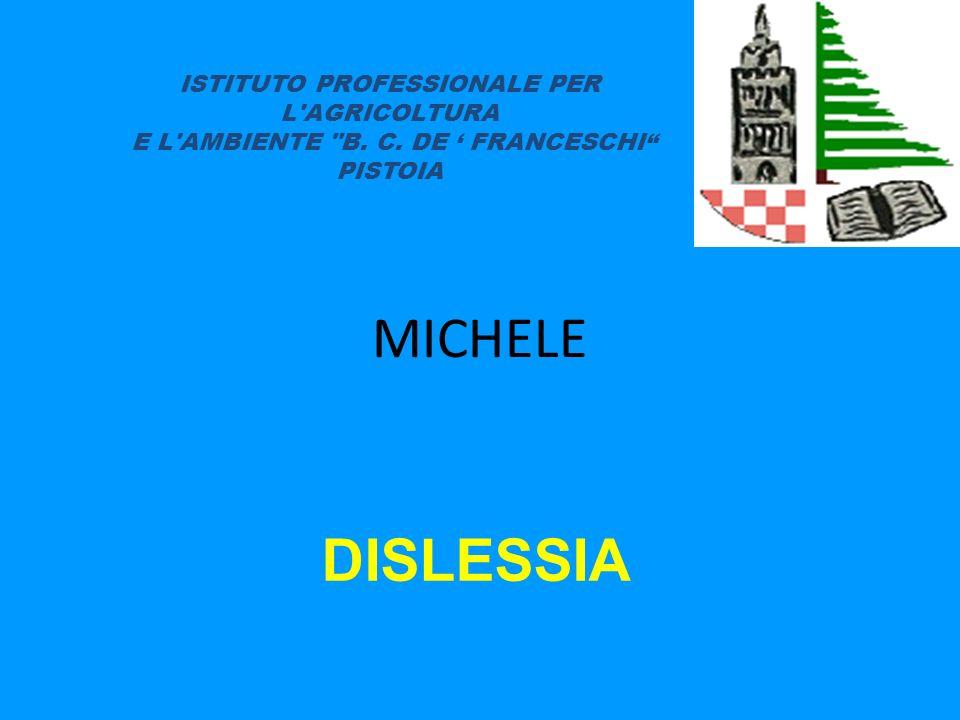 MICHELE DISLESSIA ISTITUTO PROFESSIONALE PER L'AGRICOLTURA E L'AMBIENTE