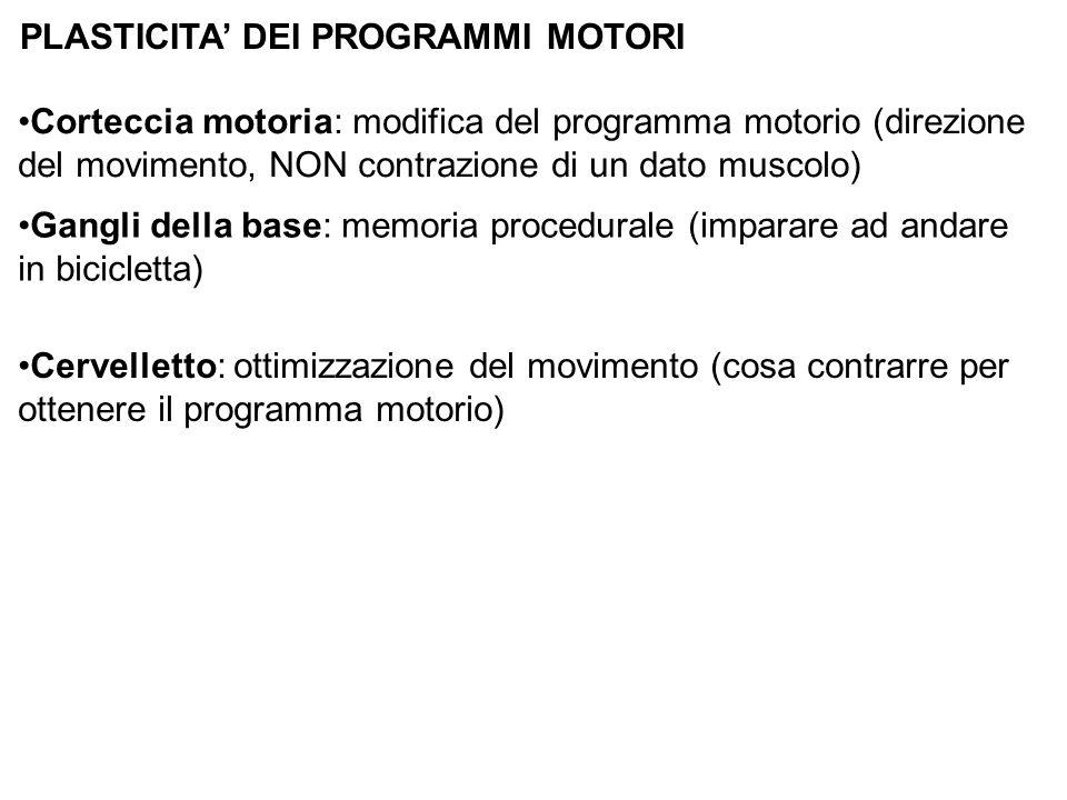 PLASTICITA DEI PROGRAMMI MOTORI Corteccia motoria: modifica del programma motorio (direzione del movimento, NON contrazione di un dato muscolo) Gangli