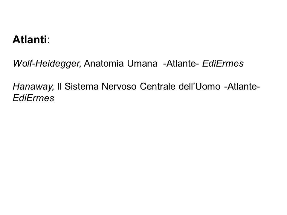 Atlanti: Wolf-Heidegger, Anatomia Umana -Atlante- EdiErmes Hanaway, Il Sistema Nervoso Centrale dellUomo -Atlante- EdiErmes