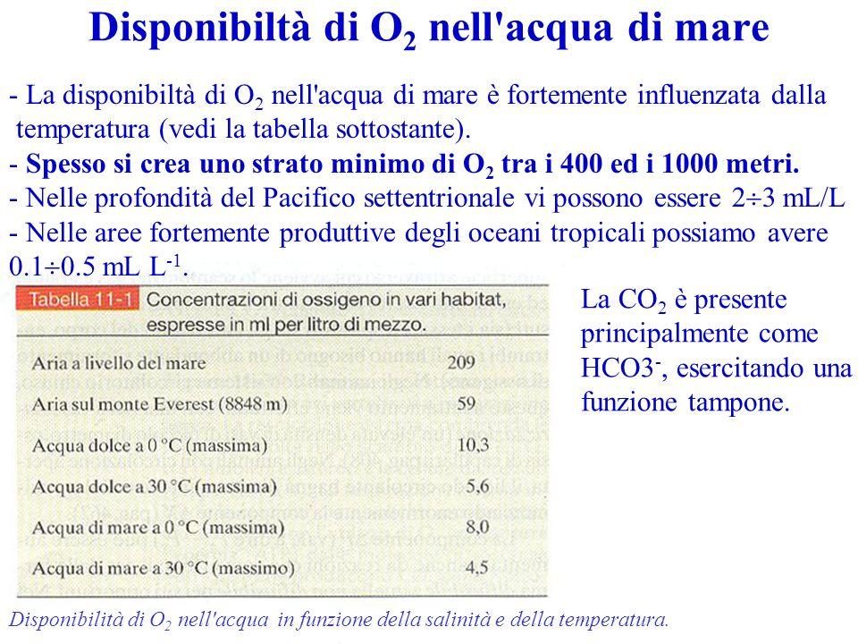 Disponibiltà di O 2 nell'acqua di mare Disponibilità di O 2 nell'acqua in funzione della salinità e della temperatura. - La disponibiltà di O 2 nell'a