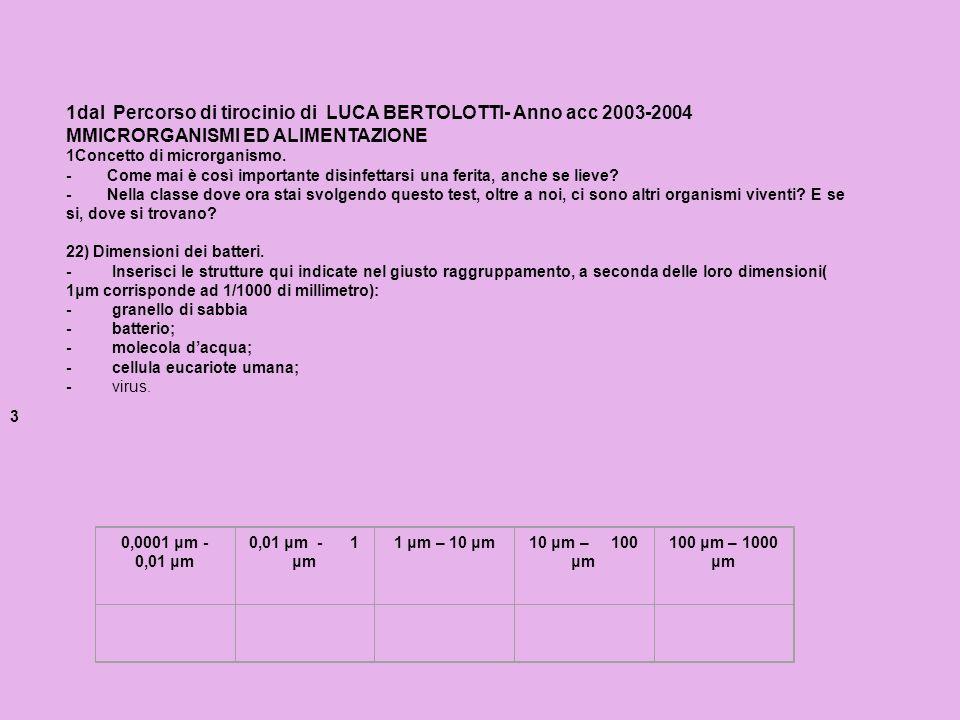 1dal Percorso di tirocinio di LUCA BERTOLOTTI- Anno acc 2003-2004 MMICRORGANISMI ED ALIMENTAZIONE 1Concetto di microrganismo. - Come mai è così import
