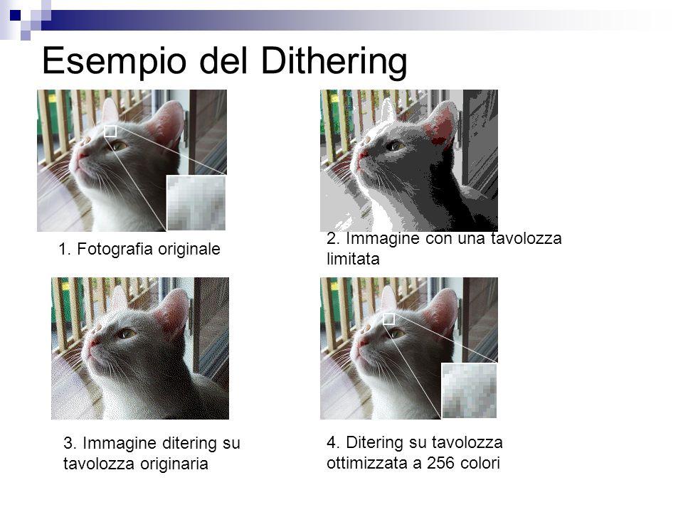 Esempio del Dithering 1. Fotografia originale 2. Immagine con una tavolozza limitata 3. Immagine ditering su tavolozza originaria 4. Ditering su tavol