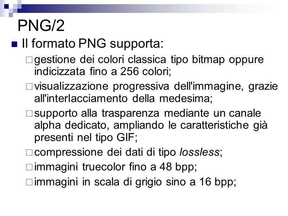 PNG/2 Il formato PNG supporta: gestione dei colori classica tipo bitmap oppure indicizzata fino a 256 colori; visualizzazione progressiva dell'immagin