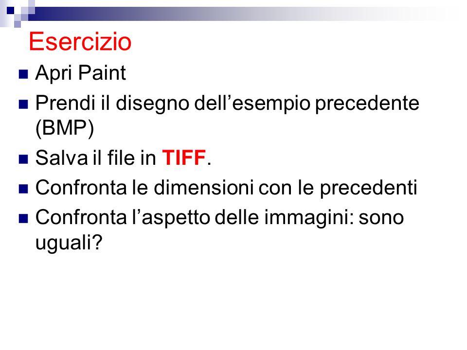 Esercizio Apri Paint Prendi il disegno dellesempio precedente (BMP) Salva il file in TIFF. Confronta le dimensioni con le precedenti Confronta laspett