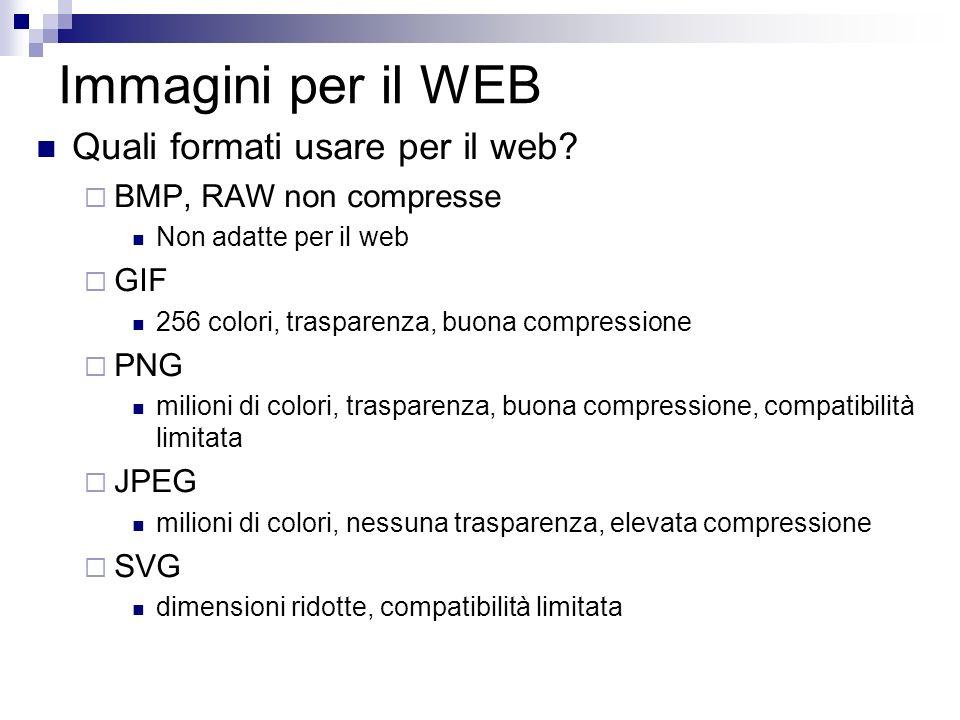 Immagini per il WEB Quali formati usare per il web? BMP, RAW non compresse Non adatte per il web GIF 256 colori, trasparenza, buona compressione PNG m