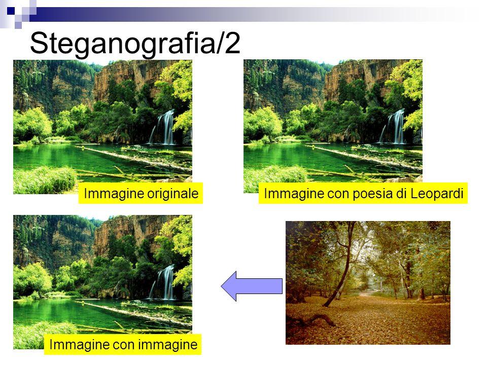 Steganografia/2 Immagine originaleImmagine con poesia di Leopardi Immagine con immagine