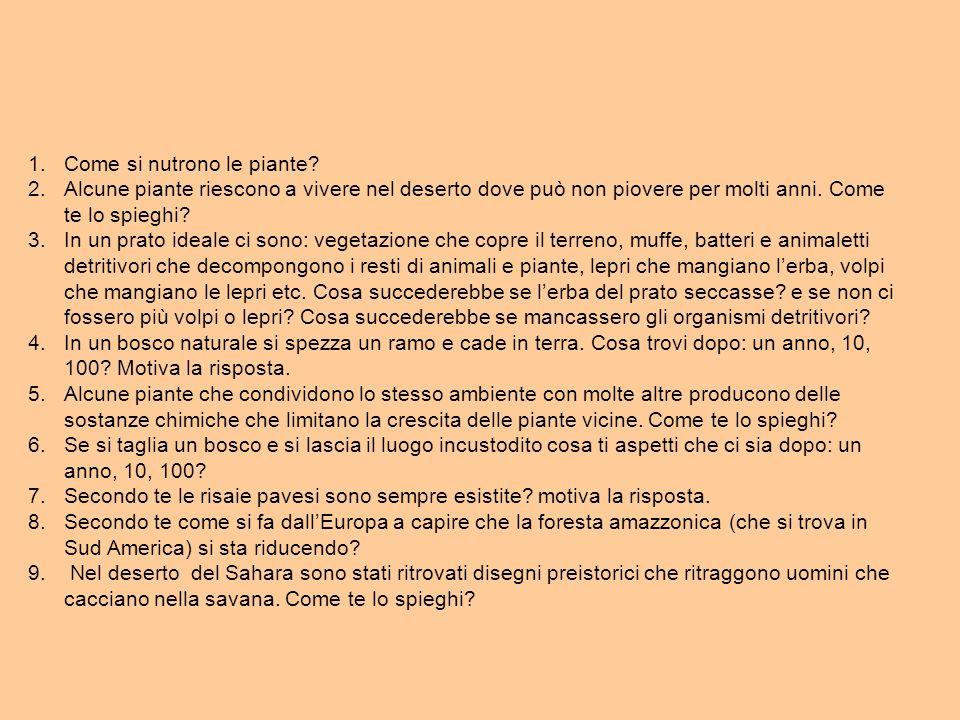 E PER SAPERE SE IL TUTTO HA AVUTO SUCCESSO VERIFICHE VALUTAZIONE http://www.edscuola.it/archivio/valutazione.html INDAGINE PISA http://www.edscuola.it/archivio/norme/varie/pisa_2003.p df