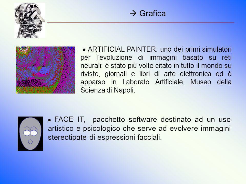 Grafica FACE IT, pacchetto software destinato ad un uso artistico e psicologico che serve ad evolvere immagini stereotipate di espressioni facciali. A