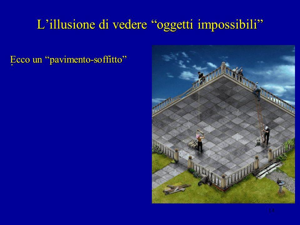 13 4. Le illusioni non disfacibili Lillusione di Lyell-Mueller: