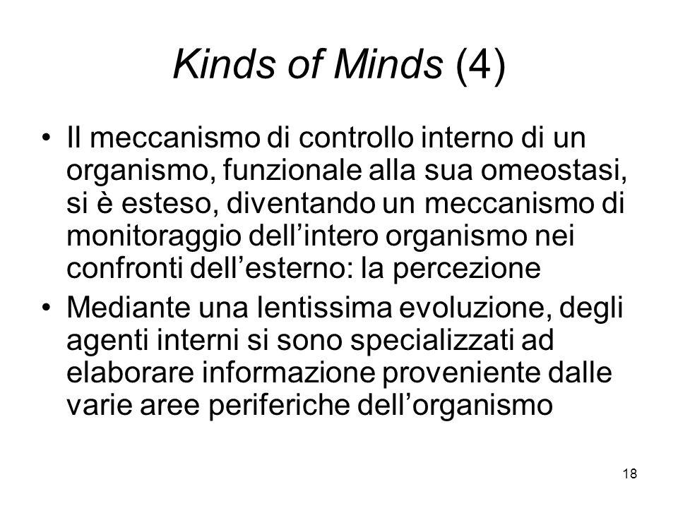 18 Kinds of Minds (4) Il meccanismo di controllo interno di un organismo, funzionale alla sua omeostasi, si è esteso, diventando un meccanismo di monitoraggio dellintero organismo nei confronti dellesterno: la percezione Mediante una lentissima evoluzione, degli agenti interni si sono specializzati ad elaborare informazione proveniente dalle varie aree periferiche dellorganismo