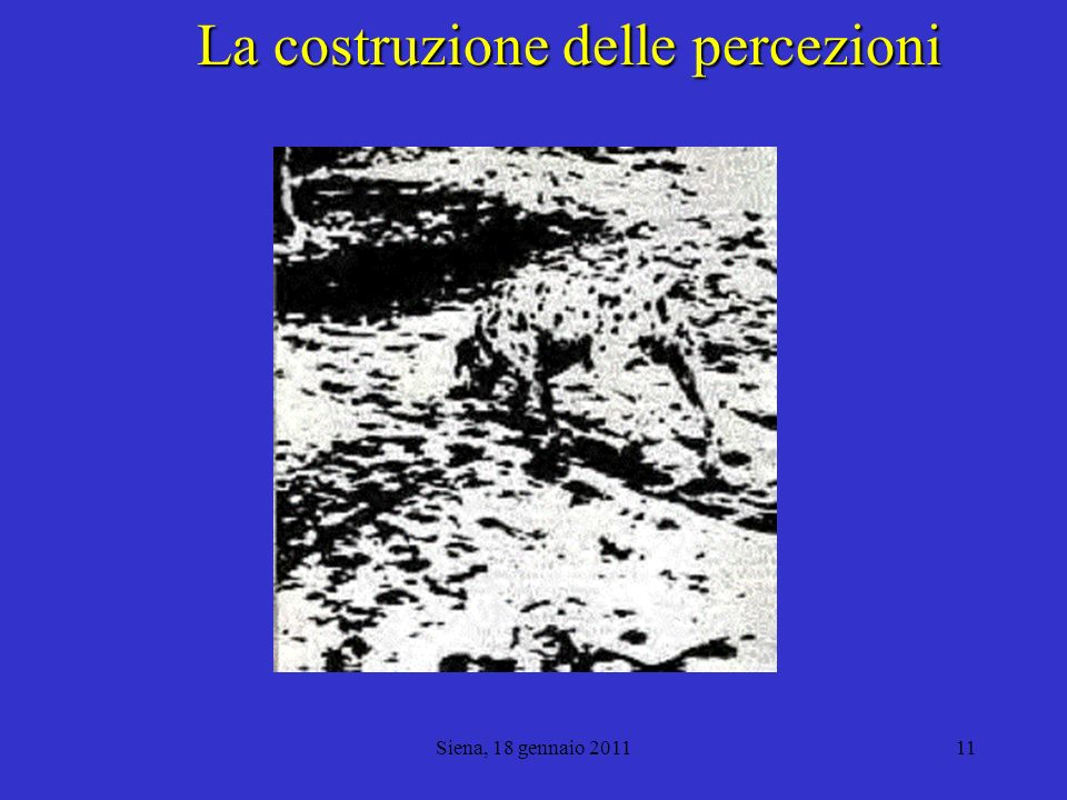 Siena, 18 gennaio 201112 Un esempio matematico