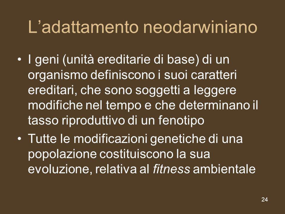 24 Ladattamento neodarwiniano I geni (unità ereditarie di base) di un organismo definiscono i suoi caratteri ereditari, che sono soggetti a leggere modifiche nel tempo e che determinano il tasso riproduttivo di un fenotipo Tutte le modificazioni genetiche di una popolazione costituiscono la sua evoluzione, relativa al fitness ambientale