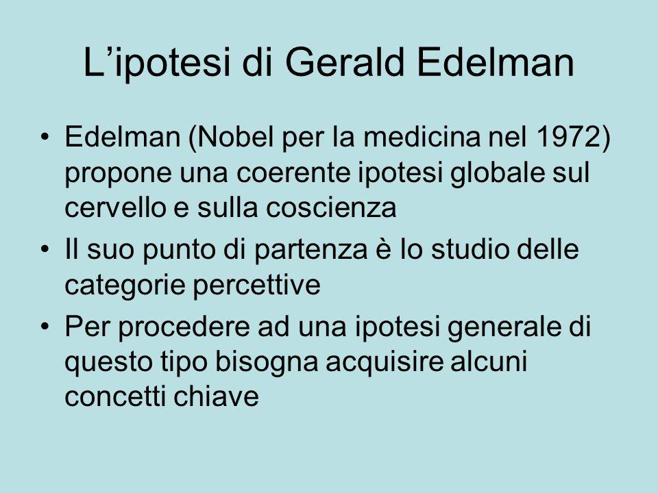 Lipotesi di Gerald Edelman Edelman (Nobel per la medicina nel 1972) propone una coerente ipotesi globale sul cervello e sulla coscienza Il suo punto d