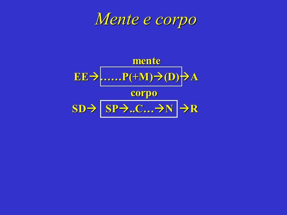 Mente e corpo mente EE ……P(+M) (D) A EE ……P(+M) (D) A corpo corpo SD SP..C… N R SD SP..C… N R