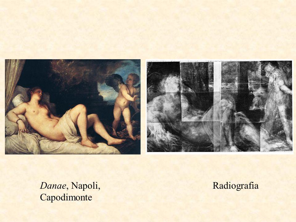 Danae, Napoli, Capodimonte Radiografia