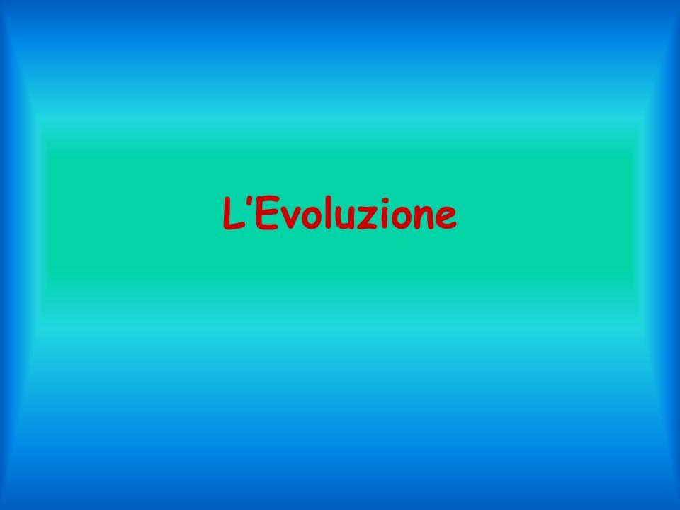 LEvoluzione