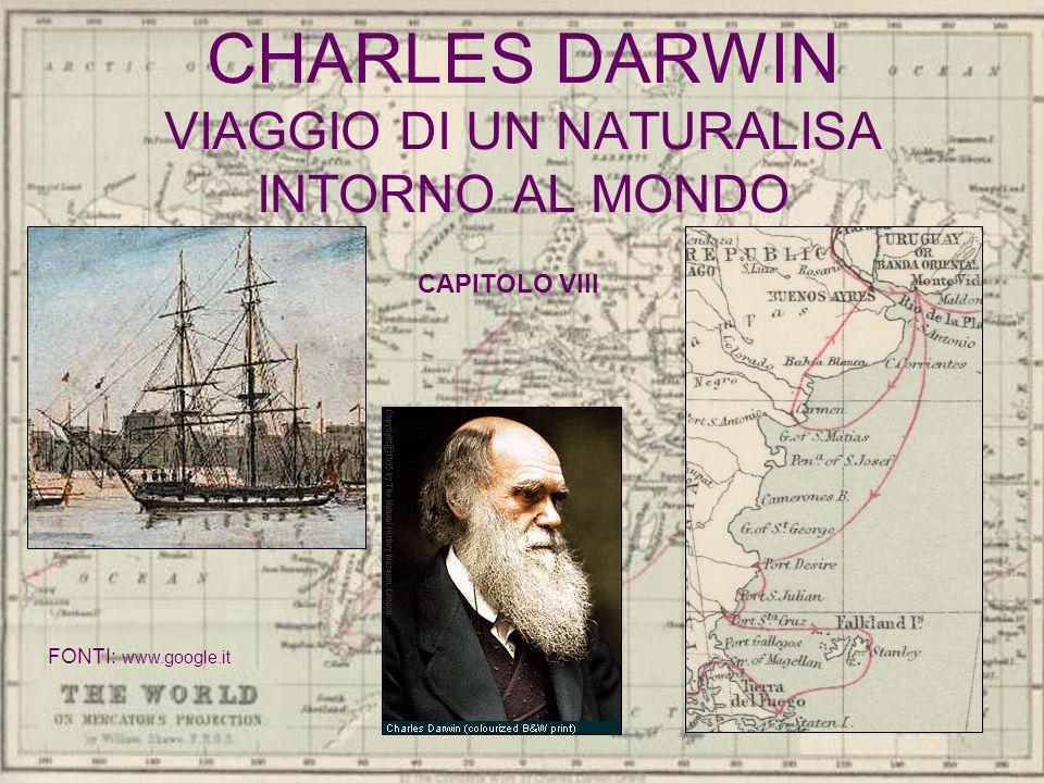 CHARLES DARWIN VIAGGIO DI UN NATURALISA INTORNO AL MONDO CAPITOLO VIII FONTI: www.google.it