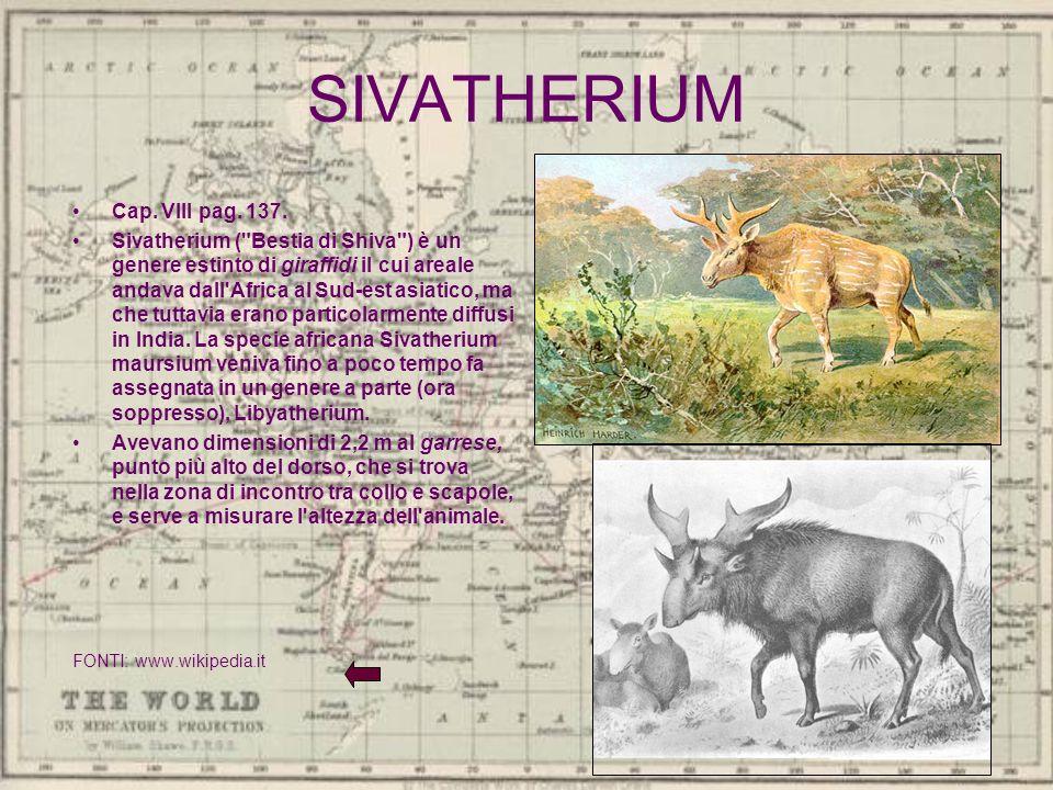SIVATHERIUM Cap. VIII pag. 137. Sivatherium (