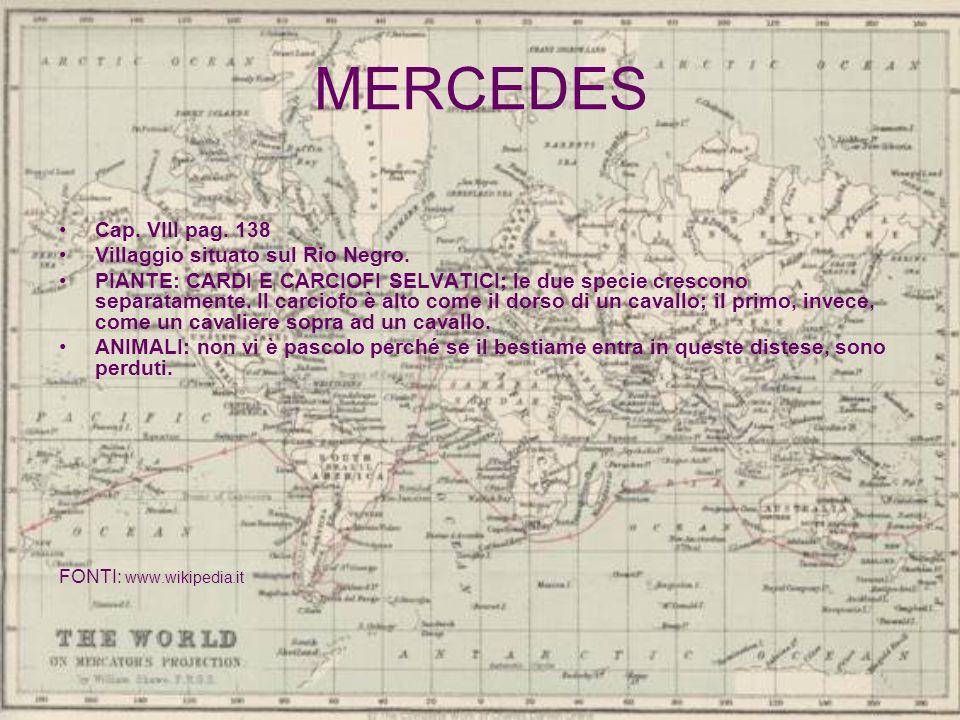 MERCEDES Cap. VIII pag. 138 Villaggio situato sul Rio Negro. PIANTE: CARDI E CARCIOFI SELVATICI; le due specie crescono separatamente. Il carciofo è a