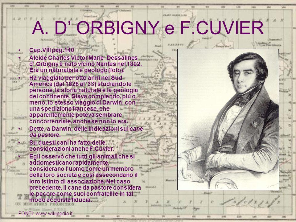 A. D ORBIGNY e F.CUVIER Cap.VIII pag.140 Alcide Charles Victor Marie Dessalines d Orbigny è nato vicino Nantes nel 1802. Era un naturalista e geologo