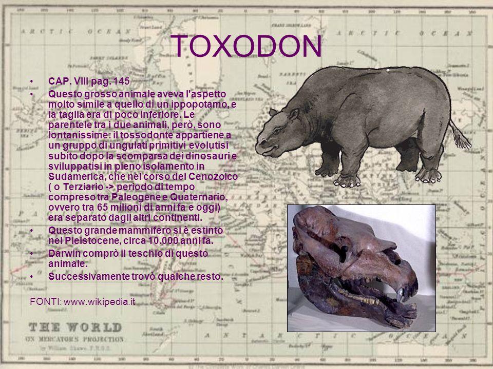 TOXODON CAP. VIII pag. 145 Questo grosso animale aveva l'aspetto molto simile a quello di un ippopotamo, e la taglia era di poco inferiore. Le parente