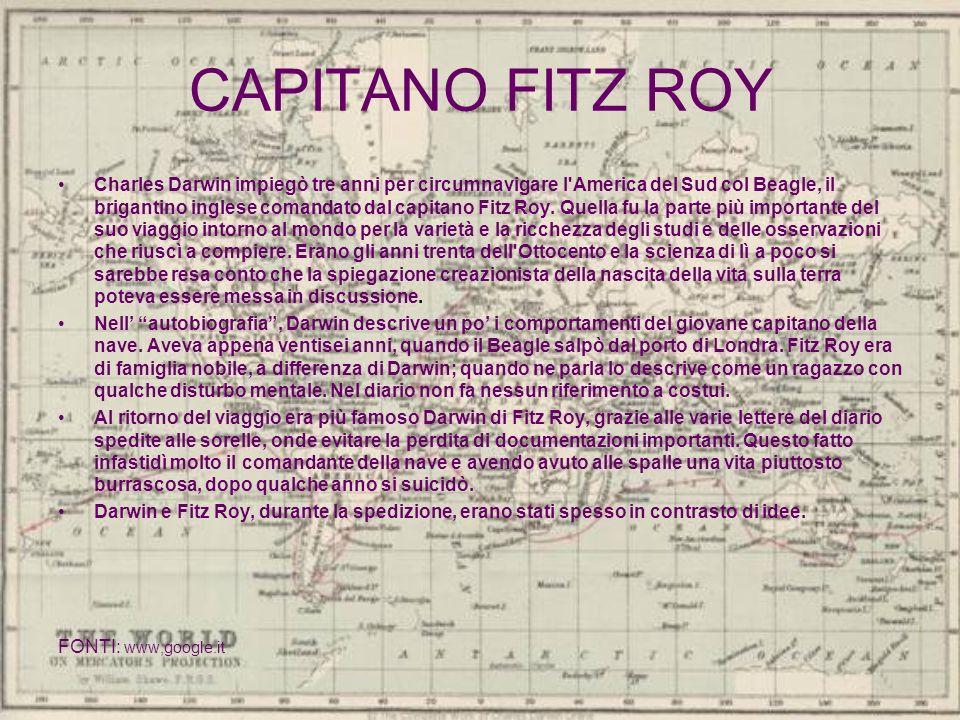 CAPITANO FITZ ROY Charles Darwin impiegò tre anni per circumnavigare l'America del Sud col Beagle, il brigantino inglese comandato dal capitano Fitz R