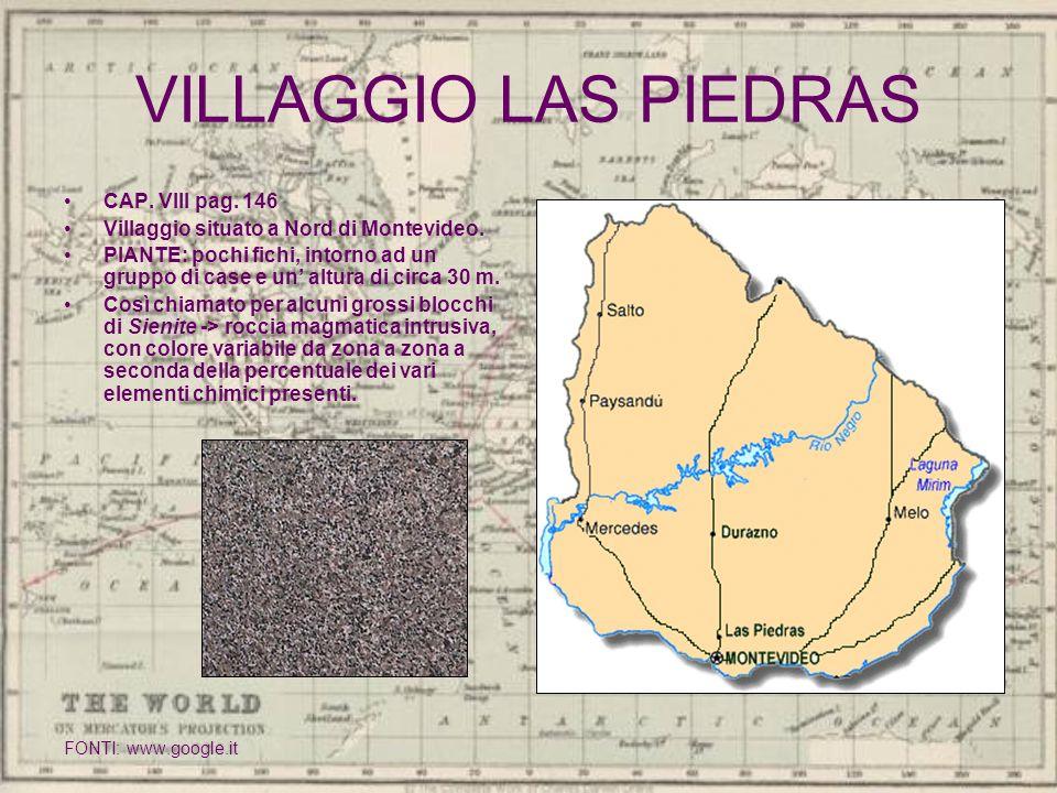 VILLAGGIO LAS PIEDRAS CAP. VIII pag. 146 Villaggio situato a Nord di Montevideo. PIANTE: pochi fichi, intorno ad un gruppo di case e un altura di circ
