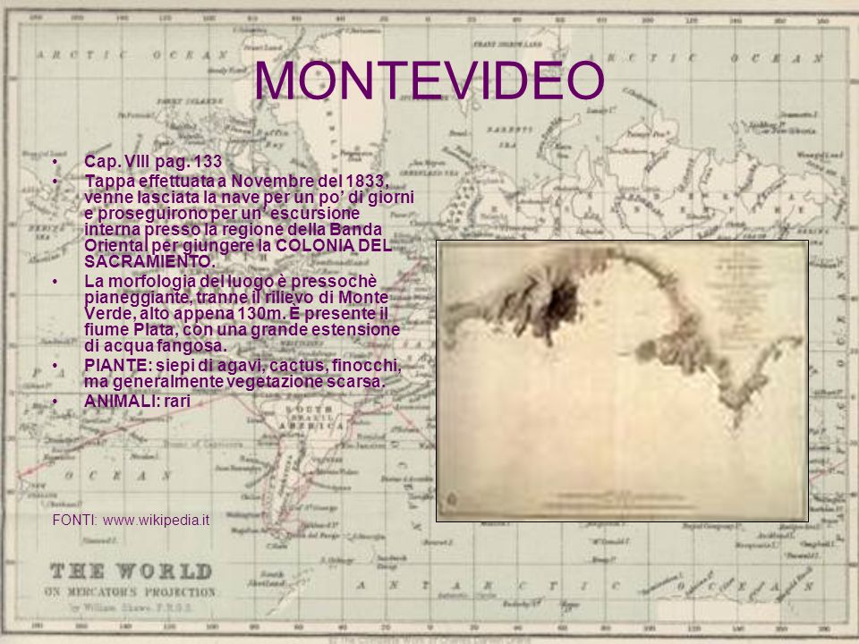 MONTEVIDEO Cap. VIII pag. 133 Tappa effettuata a Novembre del 1833, venne lasciata la nave per un po di giorni e proseguirono per un escursione intern