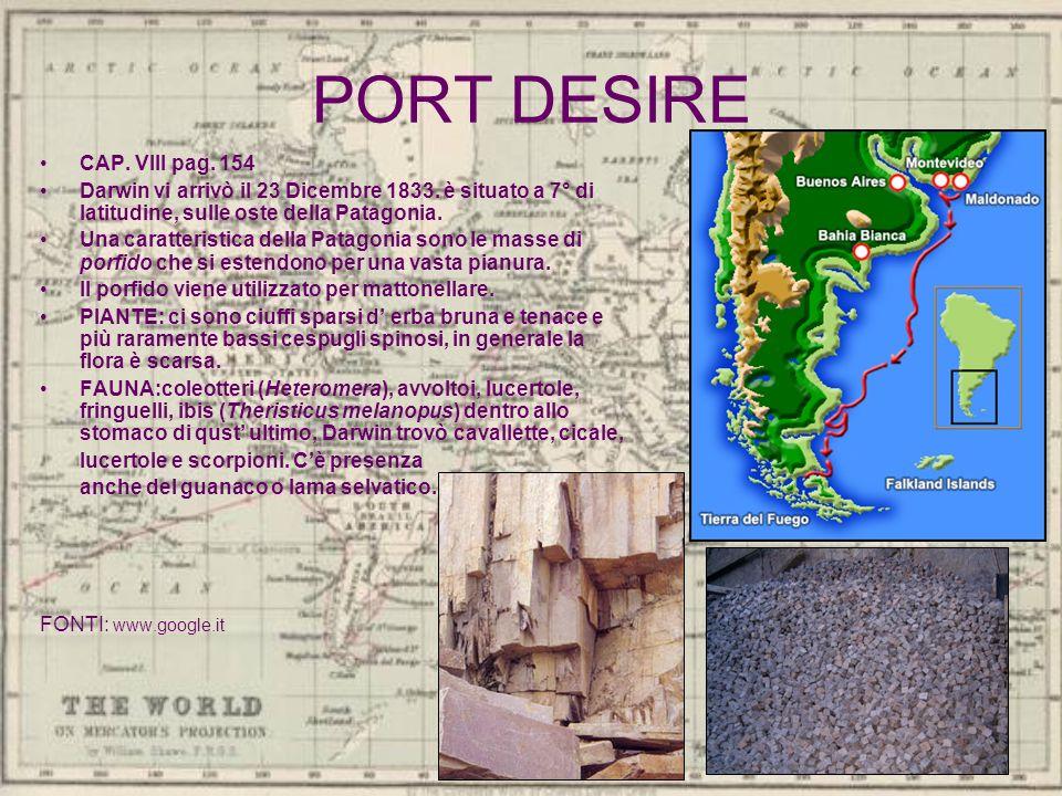 PORT DESIRE CAP. VIII pag. 154 Darwin vi arrivò il 23 Dicembre 1833. è situato a 7° di latitudine, sulle oste della Patagonia. Una caratteristica dell