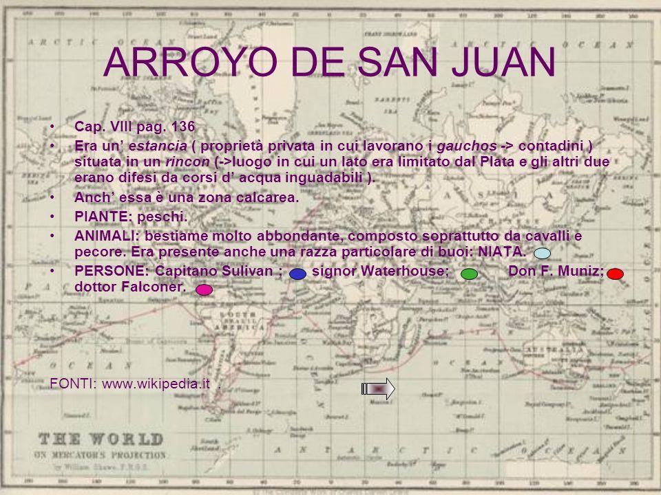 ARROYO DE SAN JUAN Cap. VIII pag. 136 Era un estancia ( proprietà privata in cui lavorano i gauchos -> contadini ) situata in un rincon (->luogo in cu