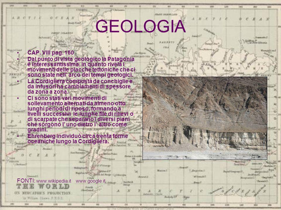 GEOLOGIA CAP. VIII pag. 160 Dal punto di vista geologico la Patagonia è interessantissima, in quanto rivela i movimenti delle placche tettoniche che c