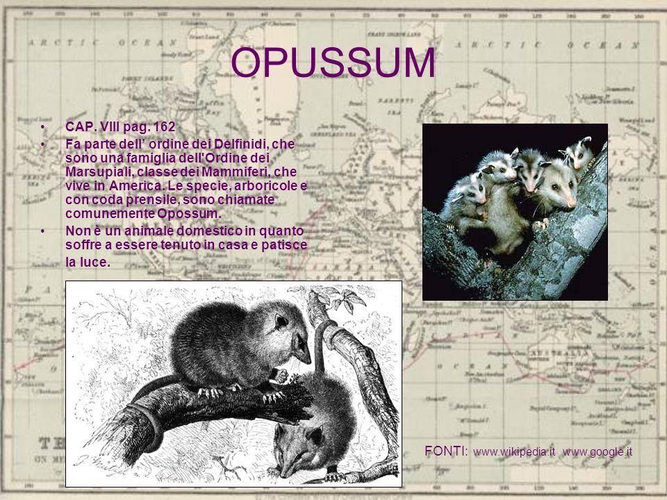 OPUSSUM CAP. VIII pag. 162 Fa parte dell ordine dei Delfinidi, che sono una famiglia dell'Ordine dei Marsupiali, classe dei Mammiferi, che vive in Ame