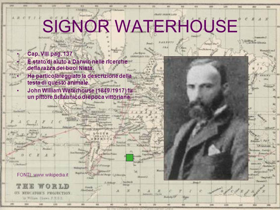 SIGNOR WATERHOUSE Cap. VIII pag. 137 È stato di aiuto a Darwin nelle ricerche della razza dei buoi Niata. Ha particolareggiato la descrizione della te