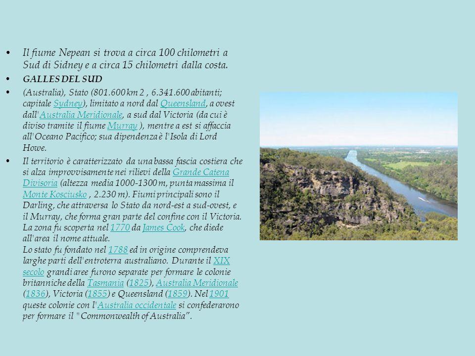 Il fiume Nepean si trova a circa 100 chilometri a Sud di Sidney e a circa 15 chilometri dalla costa.