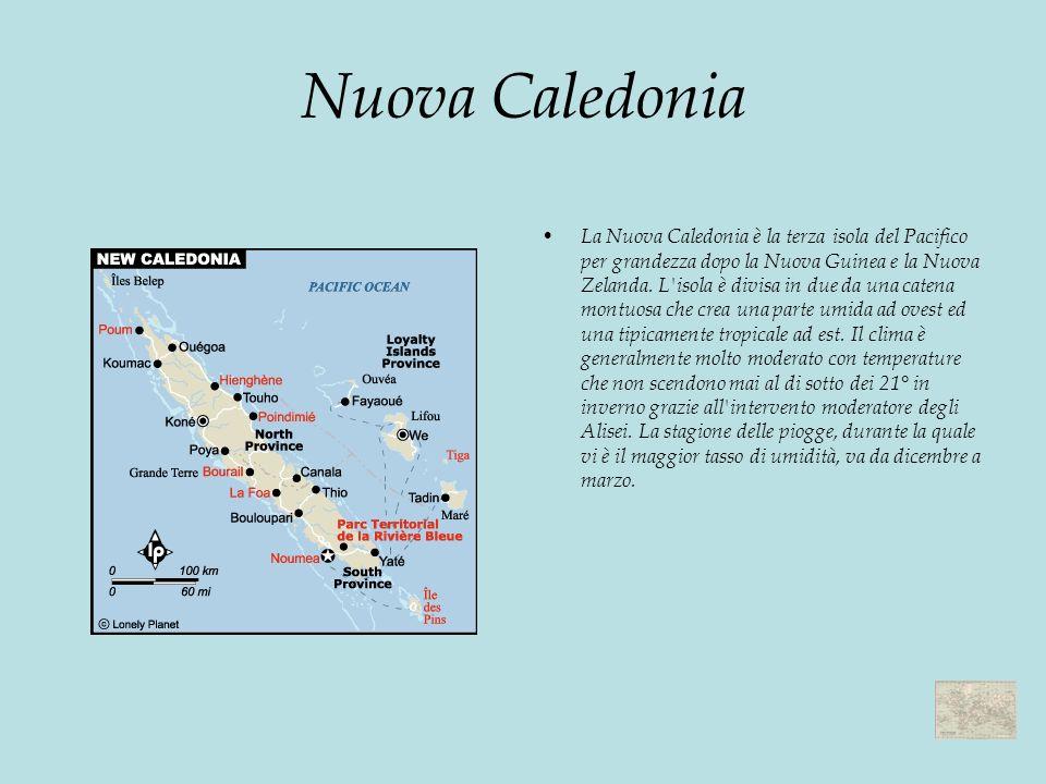 Nuova Caledonia La Nuova Caledonia è la terza isola del Pacifico per grandezza dopo la Nuova Guinea e la Nuova Zelanda.