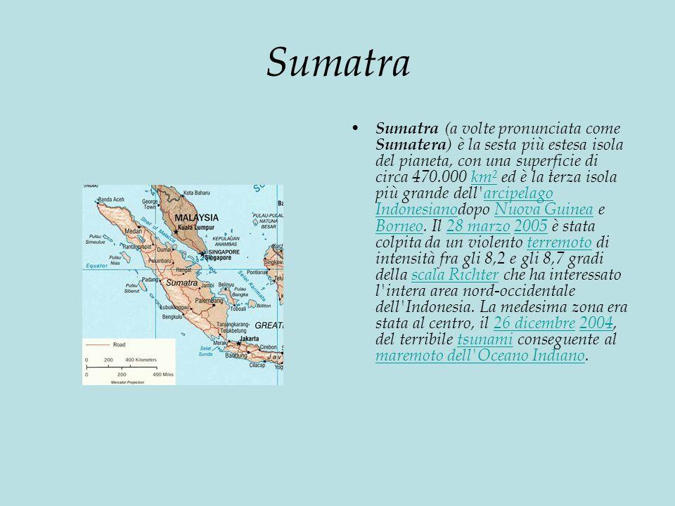 Sumatra Sumatra (a volte pronunciata come Sumatera ) è la sesta più estesa isola del pianeta, con una superficie di circa 470.000 km² ed è la terza isola più grande dell arcipelago Indonesianodopo Nuova Guinea e Borneo.