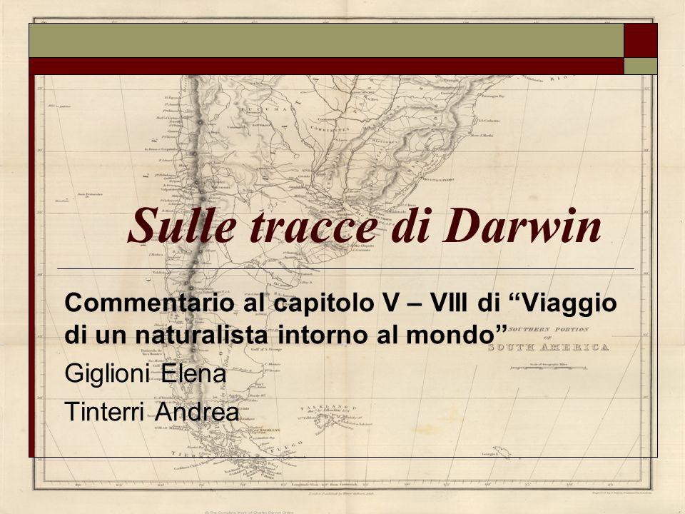 Sulle tracce di Darwin Commentario al capitolo V – VIII di Viaggio di un naturalista intorno al mondo Giglioni Elena Tinterri Andrea