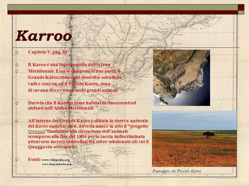 Karroo Capitolo V, pag. 83 Il Karoo è una regione arida dellAfrica Meridionale. Essa si compone di due parti: il Grande Karoo,zona semi-desertica solc
