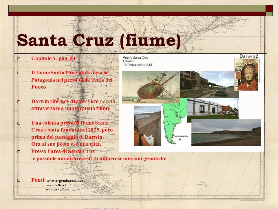 Santa Cruz (fiume) Capitolo V, pag. 84 Il fiume Santa Cruz attraversa la Patagonia nei pressi della Terra del Fuoco Darwin riferisce di aver visto nan