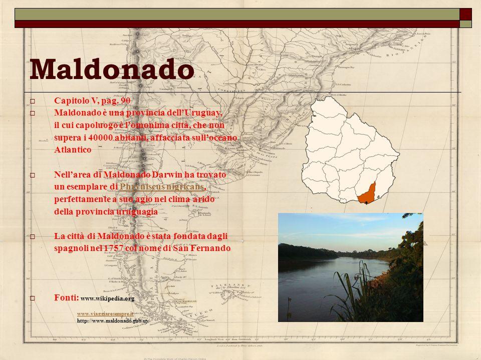 Maldonado Capitolo V, pag. 90 Maldonado è una provincia dellUruguay, il cui capoluogo è lomonima città, che non supera i 40000 abitanti, affacciata su