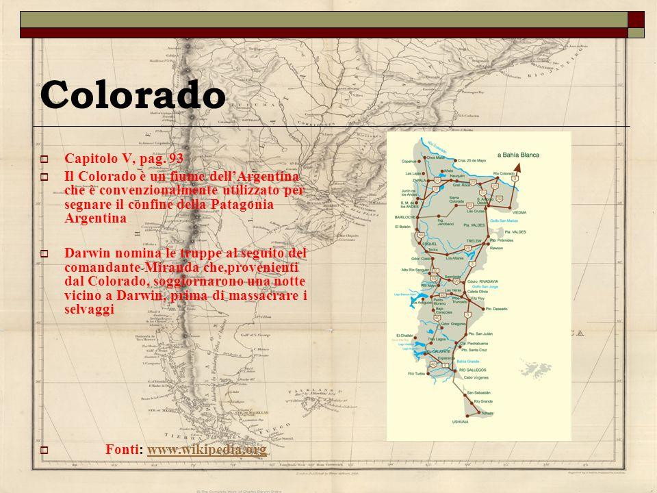 Colorado Capitolo V, pag. 93 Il Colorado è un fiume dellArgentina che è convenzionalmente utilizzato per segnare il confine della Patagonia Argentina