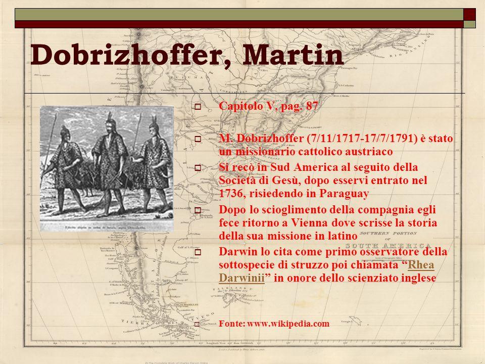 Dobrizhoffer, Martin Capitolo V, pag. 87 M. Dobrizhoffer (7/11/1717-17/7/1791) è stato un missionario cattolico austriaco Si recò in Sud America al se
