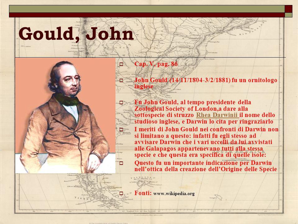 Gould, John Cap. V, pag. 86 John Gould (14/11/1804-3/2/1881) fu un ornitologo inglese Fu John Gould, al tempo presidente della Zoological Society of L